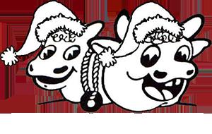 Christmas Experience Logo